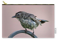 Gray Catbird After The Rain Carry-all Pouch