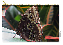 Gray Cracker Butterfly Carry-all Pouch