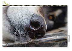 Carry-all Pouch featuring the photograph Gray Wolf Nose by Teri Virbickis