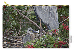 Great Blue Heron Nestling Carry-all Pouch