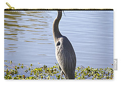 Carry-all Pouch featuring the photograph Great Blue Heron by Phyllis Denton