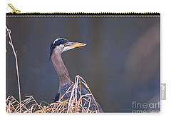 Carry-all Pouch featuring the photograph Great Blue Heron Waiting by Sharon Talson