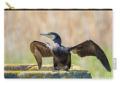 Great Cormorant - Phalacrocorax Carbo Carry-all Pouch by Jivko Nakev