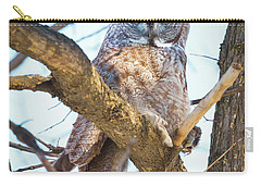 Great Gray Owl Carry-all Pouch by Ricky L Jones