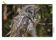 Great Grey Owl In Windy Spring Carry-all Pouch by Yeates Photography