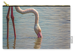 Greater Flamingo In Parc De Camargue, France Carry-all Pouch
