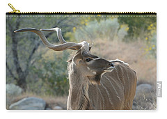 Carry-all Pouch featuring the photograph Greater Kudu 4 by Fraida Gutovich
