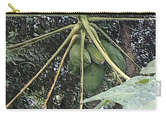 Green Birth Of The Universe Carry-all Pouch