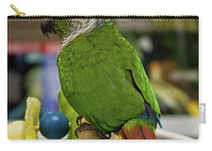Green Cheek Conure Carry-all Pouch