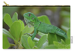 Green Common Iguana In Shrubbery Carry-all Pouch by DejaVu Designs