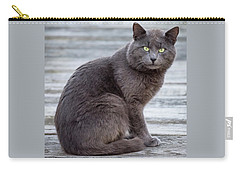 Green Eye Stare Cat Square Carry-all Pouch by Terry DeLuco