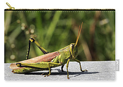 Green Grasshopper Carry-all Pouch