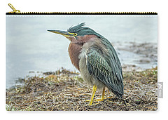 Green Heron 1340 Carry-all Pouch by Tam Ryan