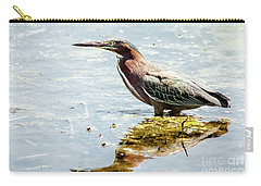 Green Heron Bright Day Carry-all Pouch by Robert Frederick