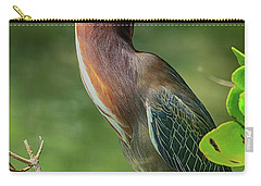 Carry-all Pouch featuring the photograph Green Heron Pose by Deborah Benoit