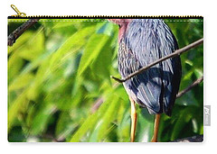 Green Heron Carry-all Pouch by Sumoflam Photography
