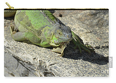 Green Iguana Resting In The Sun Carry-all Pouch by DejaVu Designs