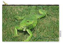 Green Iguana Stretched Out In Grass Carry-all Pouch by DejaVu Designs
