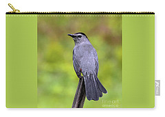 Carry-all Pouch featuring the photograph Grey Catbird by Debbie Stahre