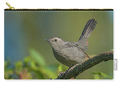 Grey Catbird Img 3 Carry-all Pouch
