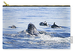Grey Whale 1 Carry-all Pouch