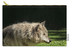Grey Wolfe In Close Up Carry-all Pouch by Patricia Hofmeester