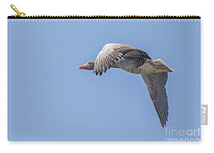 Carry-all Pouch featuring the photograph Greylag Goose - Anser Anser by Jivko Nakev
