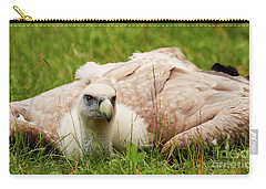 Griffon Vulture Carry-all Pouch by Nick Biemans