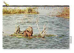 Grinning Nutria On Reeds Carry-all Pouch by Robert Frederick