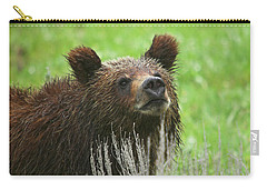 Carry-all Pouch featuring the photograph Grizzly Cub by Steve Stuller