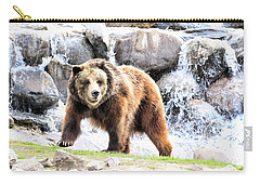 Grizzly Falls Carry-all Pouch by Steve McKinzie