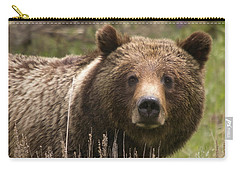 Grizzly Portrait Carry-all Pouch by Steve Stuller