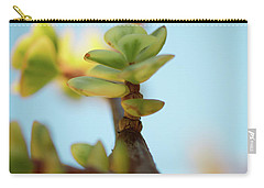 Carry-all Pouch featuring the photograph Growth by Ana V Ramirez