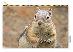 Grumpy Squirrel Carry-all Pouch