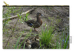 Carry-all Pouch featuring the photograph Guarding The Ducklings by Donald C Morgan