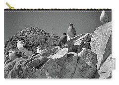Carry-all Pouch featuring the photograph Gulls On Guard - Pt Mugu, California by Samuel M Purvis III