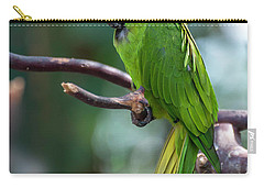 Hahn's Macaws Carry-all Pouch