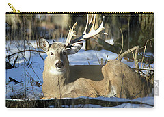 Half A Monster Carry-all Pouch by Brook Burling