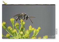 Halictid Bee - Lasioglossum Discum Carry-all Pouch by Jivko Nakev