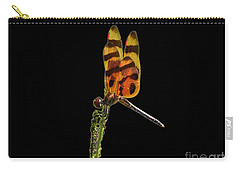 Carry-all Pouch featuring the photograph Halloween Pennant Dragonfly .png by Al Powell Photography USA