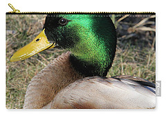 Handsome Drake Carry-all Pouch by Doris Potter