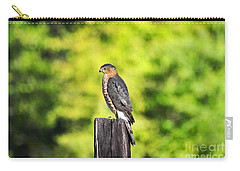 Carry-all Pouch featuring the photograph Handsome Hawk by Al Powell Photography USA