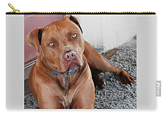 Handsome Red Nose Pit Jak Carry-all Pouch by Belinda Lee