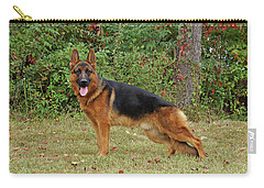 Carry-all Pouch featuring the photograph Handsome Rocco by Sandy Keeton
