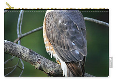 Handsome Sharp Shinned Hawk Carry-all Pouch