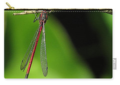 Hanging Around 2 Carry-all Pouch by John Topman