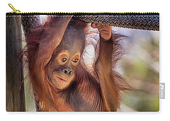 Hanging Out Carry-all Pouch by Stephanie Hayes