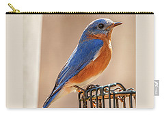 Happiness In Blue Carry-all Pouch by Jim Moore