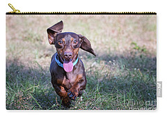 Happy Dachshund Carry-all Pouch by Stephanie Hayes