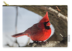 Happy Mister Cardinal Carry-all Pouch